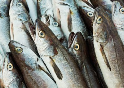 pesci-ref